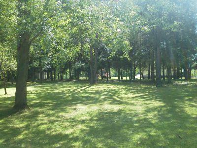 Pine Drive, Main course, Hole 14 Midrange approach