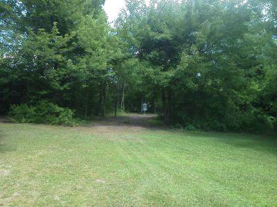 Pine Drive, Main course, Hole 11 Midrange approach