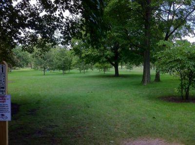 Wheeler Park, The Links, Hole 1 Tee pad