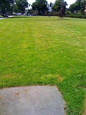 Roel Langerakpark, Main course, Hole 8 Tee pad