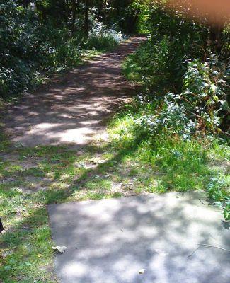 Roel Langerakpark, Main course, Hole 14 Tee pad