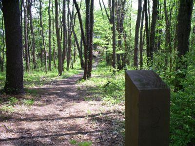 Memorial Park, Veteran's Memorial DGC, Hole 2 Tee pad
