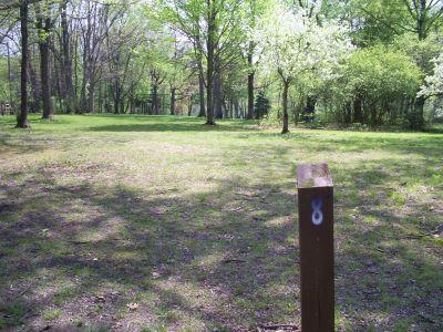 Memorial Park, Veteran's Memorial DGC, Hole 8 Tee pad