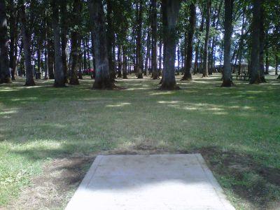 Clark Park, Main course, Hole 6 Tee pad