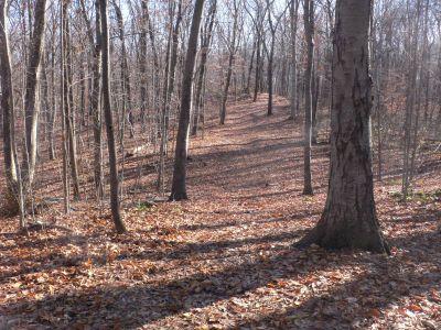 Veterans Memorial Park, Main course, Hole 2 Long tee pad