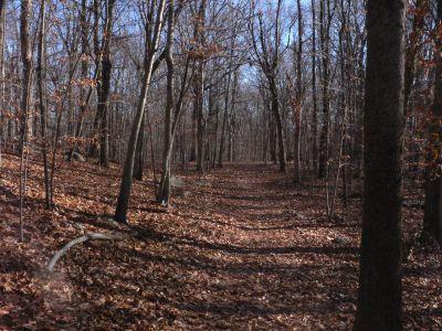 Veterans Memorial Park, Main course, Hole 4 Long tee pad