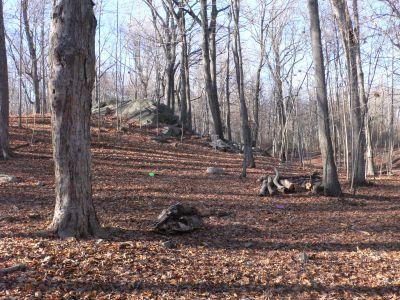 Veterans Memorial Park, Main course, Hole 8 Midrange approach