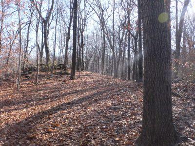 Veterans Memorial Park, Main course, Hole 2 Midrange approach