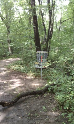 Taymouth Township Park, Main course, Hole 5 Putt
