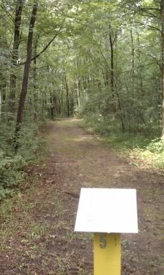 Taymouth Township Park, Main course, Hole 5 Tee pad