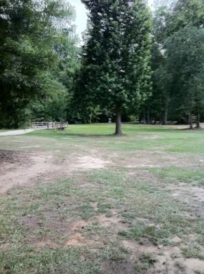 Seven Oaks Park, Main course, Hole 6 Tee pad