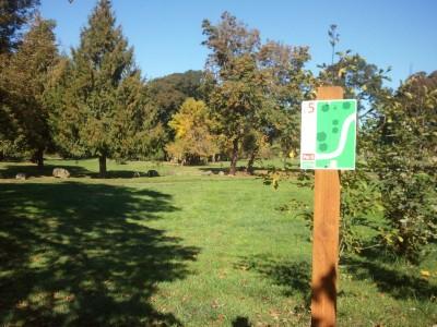 Wennerberg Park, Main course, Hole 5 Tee pad