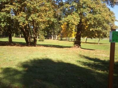 Wennerberg Park, Main course, Hole 7 Tee pad