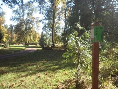 Wennerberg Park, Main course, Hole 3 Tee pad