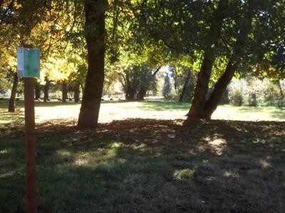 Wennerberg Park, Main course, Hole 2 Tee pad