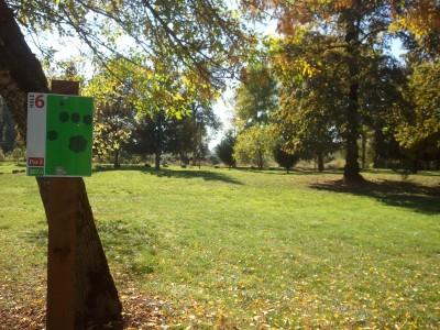 Wennerberg Park, Main course, Hole 6 Tee pad