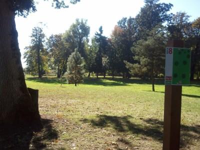 Wennerberg Park, Main course, Hole 8 Tee pad