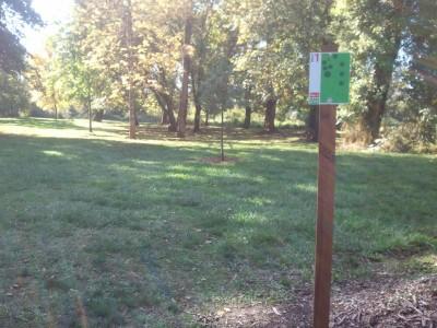 Wennerberg Park, Main course, Hole 1 Tee pad