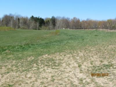 Scottville DGC, Main course, Hole 18