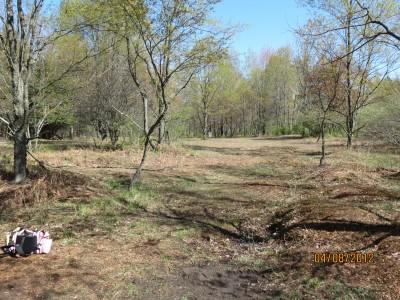 Scottville DGC, Main course, Hole 10