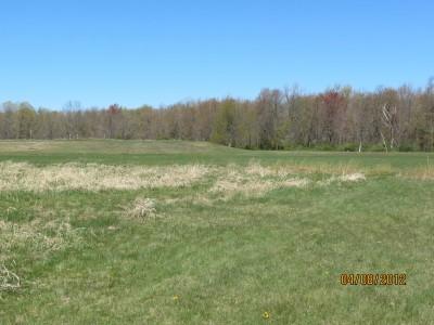 Scottville DGC, Main course, Hole 17