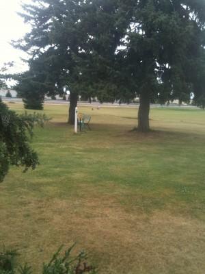 Portland Meadows, Main course, Hole 10 Tee pad
