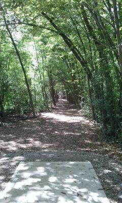 Wickes Woods, Main course, Hole 17 Tee pad