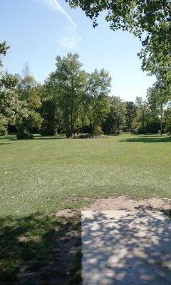 Wickes Woods, Main course, Hole 8 Tee pad