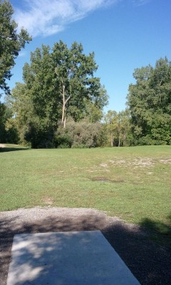 Wickes Woods, Main course, Hole 5 Tee pad