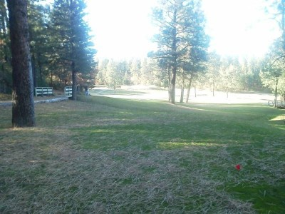 Pendaries Village DGC, Main course, Hole 2 Long tee pad