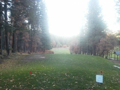 Pendaries Village DGC, Main course, Hole 8 Long tee pad
