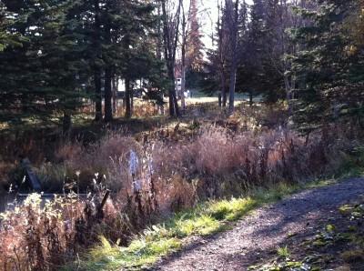 Bernie Huss Memorial Trails, Main course, Hole 9 Tee pad
