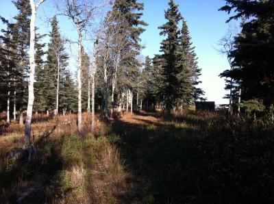 Bernie Huss Memorial Trails, Main course, Hole 2 Tee pad