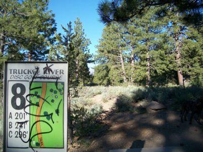 Truckee River Regional Park, Main course, Hole 8 Tee pad