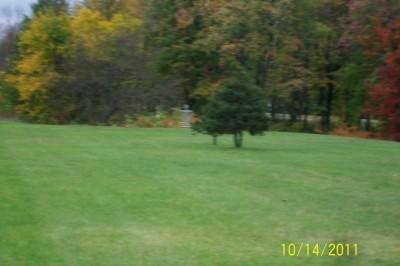 Rosewood Park, Main course, Hole 4 Tee pad