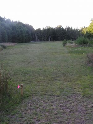 Old Airport DGC, Main course, Hole 9 Tee pad