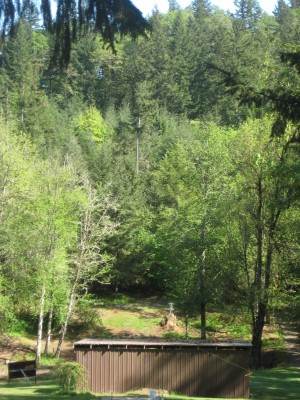 Dave Heider's Hike, Main course, Hole 8 Tee pad