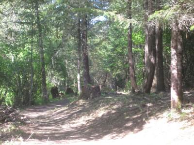 Dave Heider's Hike, Main course, Hole 9 Midrange approach