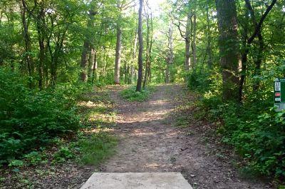 Indian Oaks, Main course, Hole 11 Long tee pad