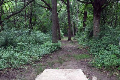 Indian Oaks, Main course, Hole 8 Long tee pad