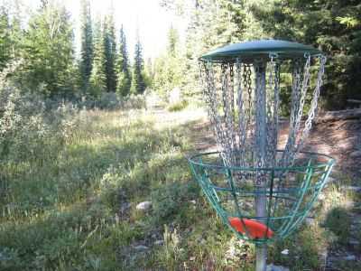 Redwood Meadows DGC, Main course, Hole 1 Reverse (back up the fairway)