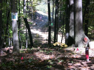 Mt. Holiday, Carly's Playground, Hole 7 Short tee pad