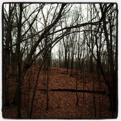 Bertha Brock County Park, Main course, Hole 17 Tee pad