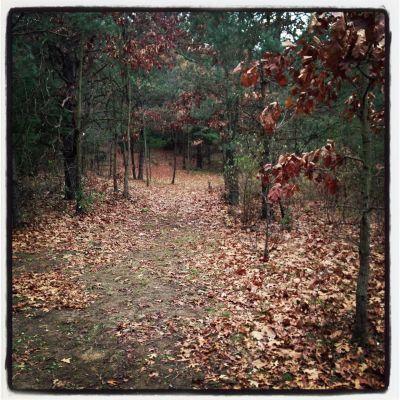 Bertha Brock County Park, Main course, Hole 4 Tee pad