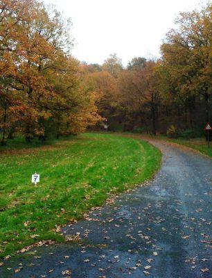 Het Doornse Gat, Main course, Hole 7 Tee pad