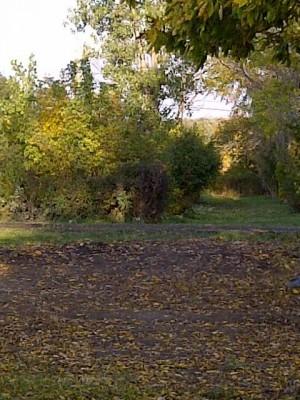 Tomahawk Park, Main course, Hole 13 Long approach