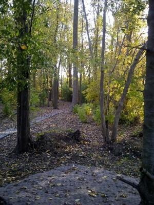 Tomahawk Park, Main course, Hole 9 Long tee pad
