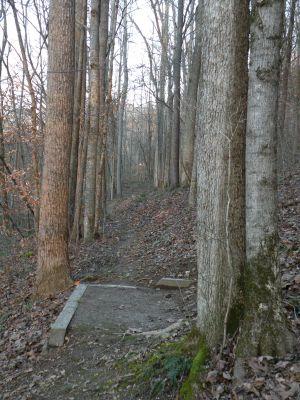 Creek's Edge, Main course, Hole 14 Tee pad