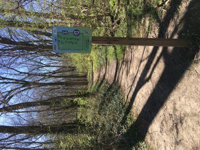 Blue Heron Park and Wetlands, Main course, Hole 13 Tee pad
