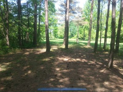 Darien Lakes State Park, Angry Apple, Hole 5 Long tee pad